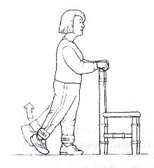 back leg lift